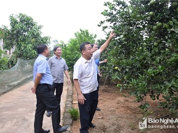 Chủ tịch UBND tỉnh ký quyết định công nhận 22 xã đạt chuẩn nông thôn mới